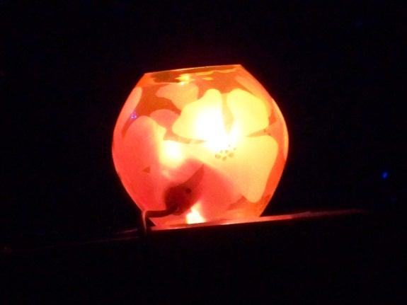 13/06/2009 Groene Engel - Oss Lampe_blog